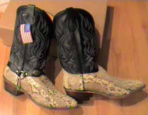 FB-buckles/fbboots2006/NaturalPythonblacktop.jpg