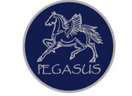 PegasusPoloMain2009/PEGASUSLOGO.JPG